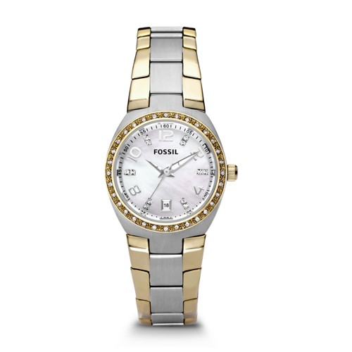 Fossil Colleague Two-Tone Stainless Steel Watch Am4183