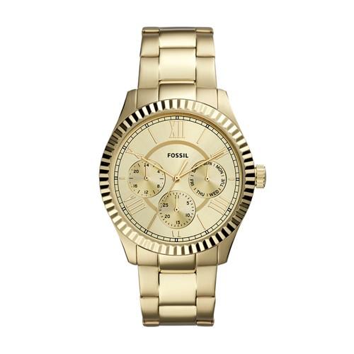 Chapman Multifunction Gold-Tone Stainless Steel Watch FS5632