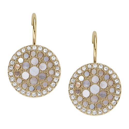 Fossil Vintage Glitz Crystal Drop Earrings  Jewelry JF02601710