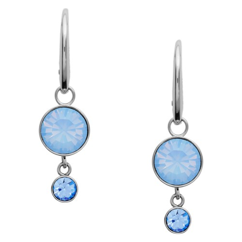 fossil Double Circle Stainless Steel Drop Earrings JOF00476040