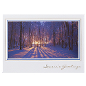 Forest Sunset in Winter