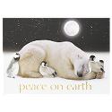 Peaceful Polar Friends