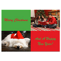 Merry Christmas in Green & Red Photo Card