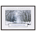 Winter Forest Stream Die Cut
