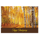 Golden Birch Forest Thanksgiving