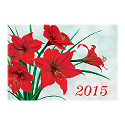 Red Pointsettia Calendar